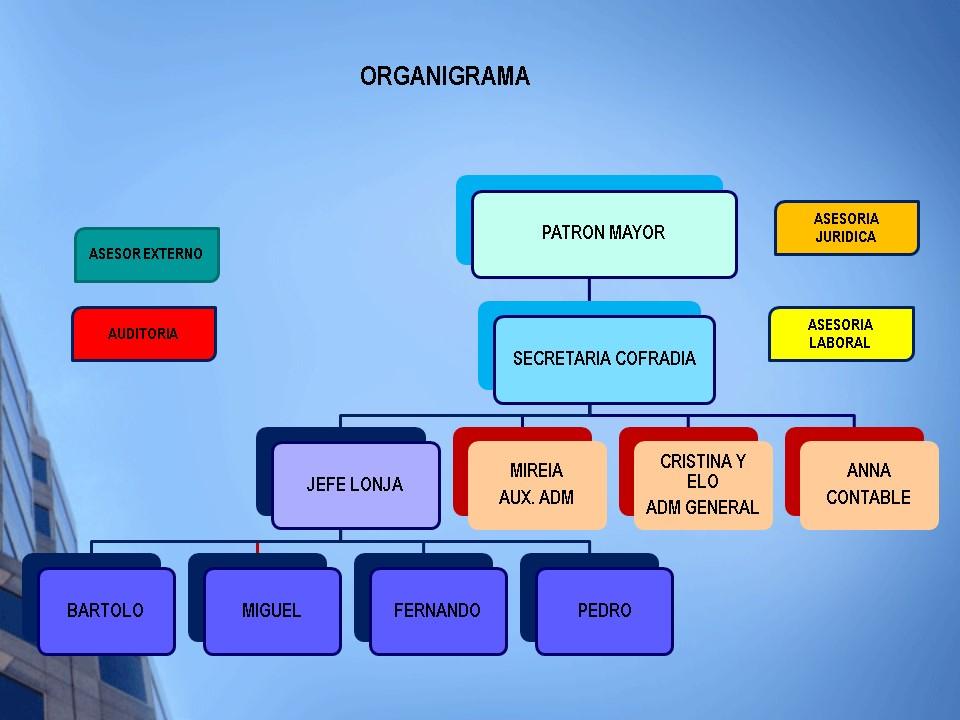 [:ca]organigrama[:]